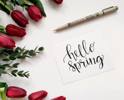 Spring Home Maintenance Guide