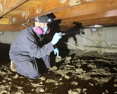 home inspections in crawl space
