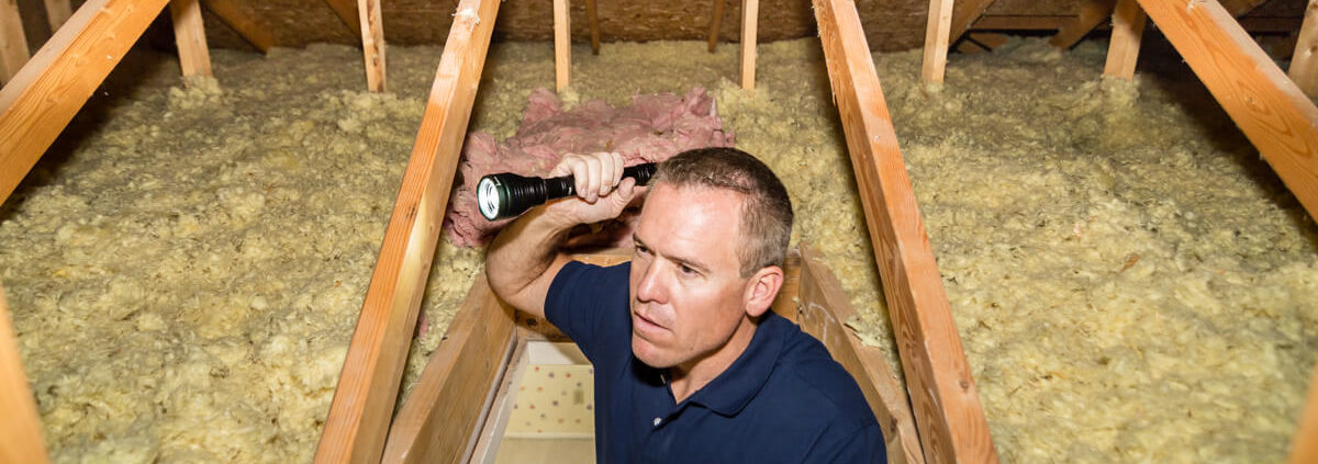 Home Inspection Basic Questions