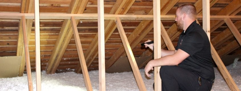 Insulation Inspection