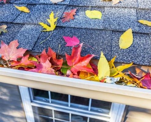 fall leaves in gutter